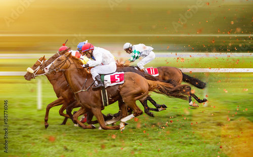 Fotografie, Obraz Race horses with jockeys on the home straight
