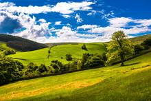 Scenic View English Countrysid...