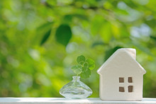 白い家 さわやかな青葉 四つ葉のクローバー