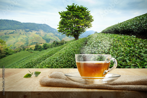 Staande foto Thee Cup of hot tea and tea leaf on the wooden table and the tea plantations background