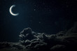 Leinwanddruck Bild -  night sky