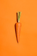 Top View Of An Carrot On Orang...