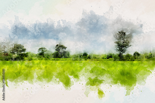 Landscape of Thailand with green field and Forest Wallpaper Mural