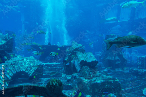 Photo Lost chambers aquarium inside Atlantis hotel on Palm Jumeirah, Dubai, UAE United
