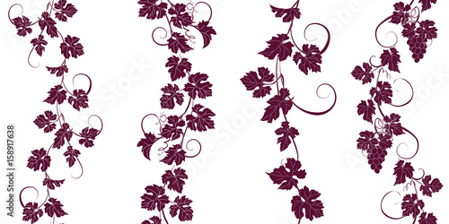 Foto  Set of seamless ornaments with vines of grapes.