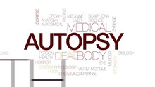 Autopsy Animated Word Cloud, Text Design Animation. Kinetic Typography.
