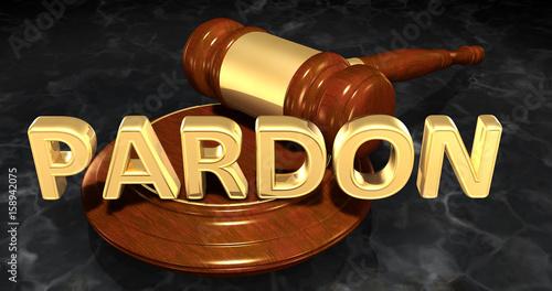 Photo Pardon Law Concept 3D Illustration