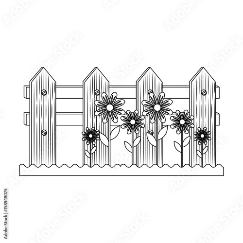 fence and flowers icon over white background vector illustration