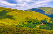 Grassy Hillside On Mountain In...