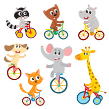 Cute Little Animal Characters Riding Unicycle, Bicycle, Tricycle, Cycling, Cartoon Vector Illustration Isolated On A White Background. Little Baby Animal Characters Riding Bikes, Bicycle