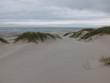Sanddünen am Nordseestrand