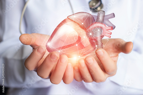 Fotografía  Cardiologist supports the heart .