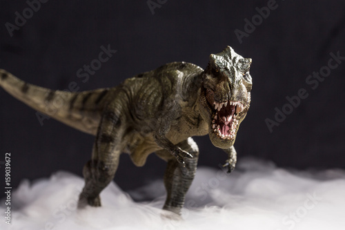 Tyrannosaurus rex on the fog isolated on black background