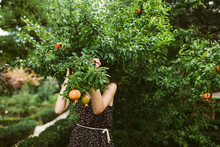 Young Woman Behind Leaves Of Pomegranate Tree