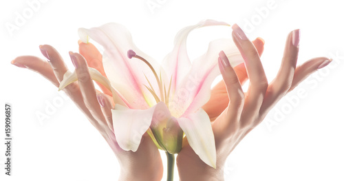Foto op Plexiglas Spa Hand skin care.Closeup of beautiful woman hands with light pink manicure on nails . Cream for hands and treatment. Delicate Lily flower in elegant and graceful hands with gracious fingers.