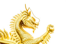 Gold Dragon Scrulpture On Whit...