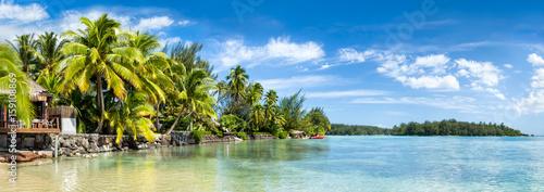 Foto auf Leinwand Ozeanien Palmenstrand und Meer als Panorama Hintergrund
