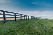Green Grass With Black Fence O...