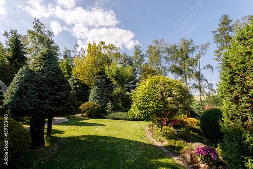 Staande foto Tuin colorful spring garden