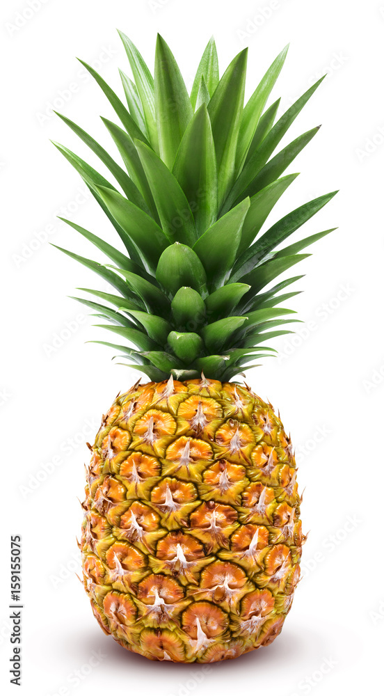 Fototapeta Pineapple isolated. One whole pineapple with green leaves isolated on white background with clipping path