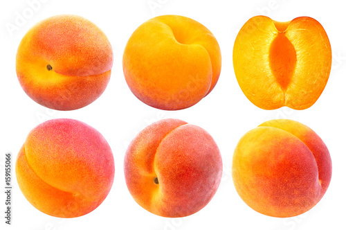 Apricot isolated. Collection of whole and cut apricots isolated on white background with clipping path
