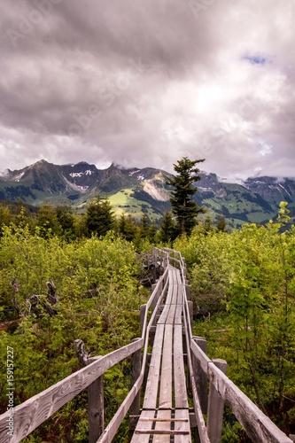 Fotografia  Holzsteg im Wald, Bergmassiv im Hintergrund