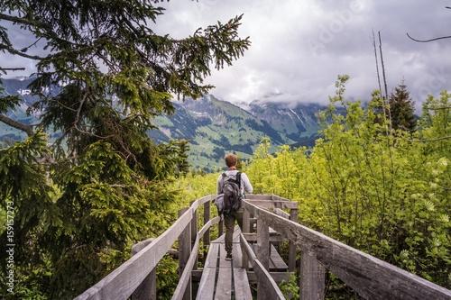 Photo  Wanderer auf Holzsteg im wiederaufgeforsteten Naturschutzgebiet