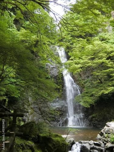 Keuken foto achterwand Watervallen 箕面公園 箕面の滝