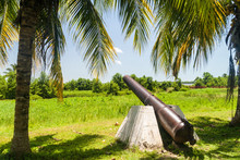 Cannon At Fort Nieuw Amsterdam In Suriname