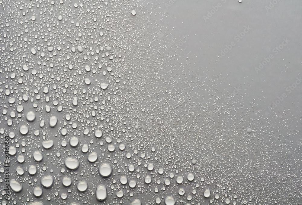 Fototapeta water drops on a gray background