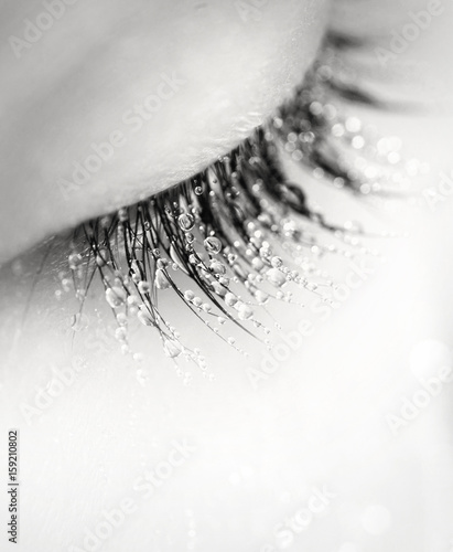 Poster Portrait Aquarelle Eyelashes in drops of dew macro black and white photograph. Gentle trembling romantic eyelashes eye girl in droplets of water with soft focus.
