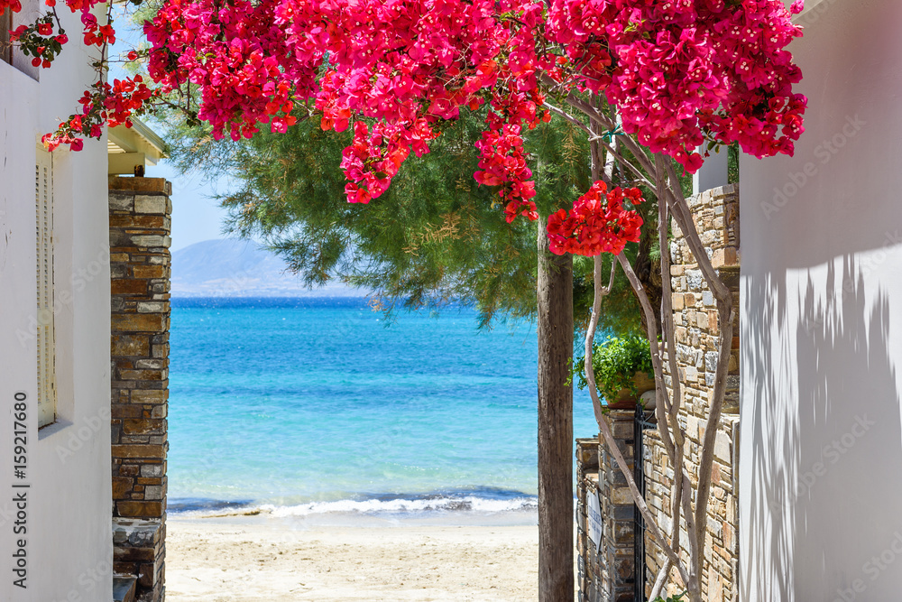 Typical Greek narrow street with summer flowers and view over sea. Naxos island. Cyclades. Greece.