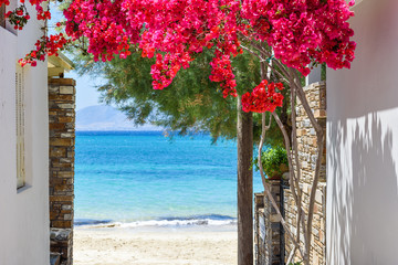 Panel SzklanyTypical Greek narrow street with summer flowers and view over sea. Naxos island. Cyclades. Greece.