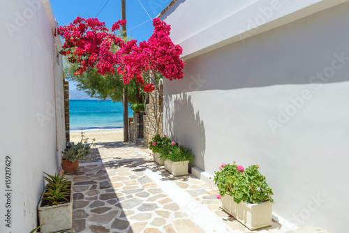 Printed kitchen splashbacks Narrow alley Typical Greek narrow street with summer flowers and view over sea. Naxos island. Cyclades. Greece.