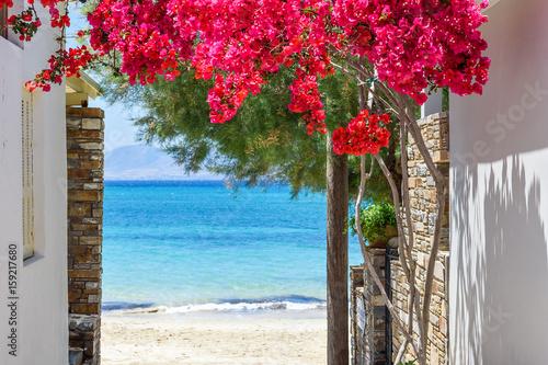 Fototapeta premium Typowa grecka wąska ulica z lato kwiatami i widokiem nad morzem. Wyspa Naxos. Cyklady. Grecja.