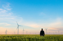 Man On Green Field Of Wheat With Windmills For Electric Power Production