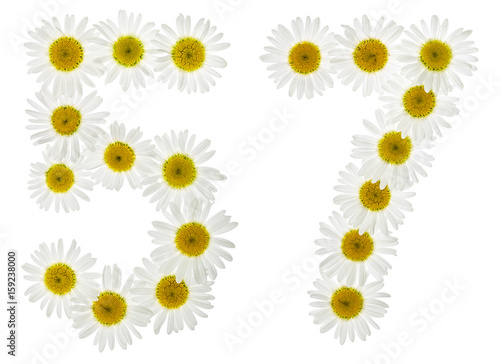 Fotografie, Obraz  Arabic numeral 57, fifty seven, from white flowers of chamomile, isolated on whi