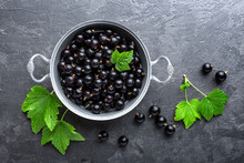 Blackcurrant Berries With Leav...