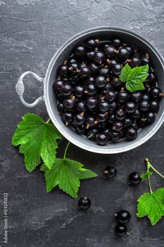 Blackcurrant berries with leaves, black currant Canvas Print