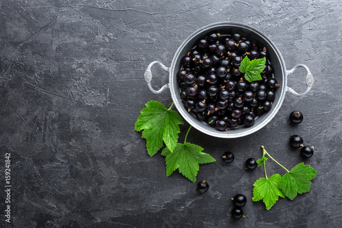 Blackcurrant berries with leaves, black currant Wallpaper Mural