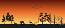 Black Silhouettes Of Animals On Wildfire Background. Bear, Wolf And Deer Escape From A Forest Fire