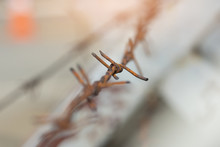 Close Up Old Rusty Barbed Wire