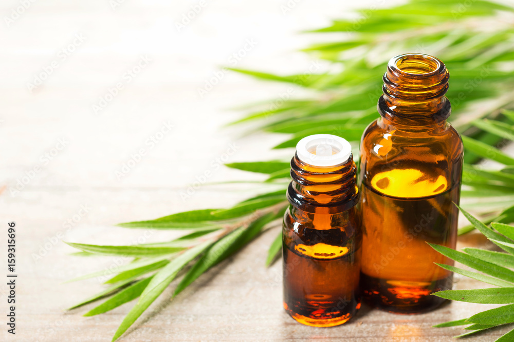 Fototapety, obrazy: fresh tea tree leaves and essential oil