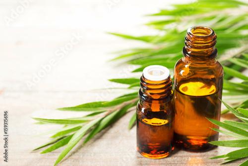 Fototapeta fresh tea tree leaves and essential oil obraz