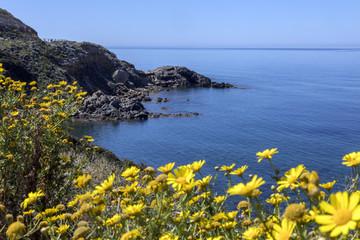 FototapetaWest Coast of Sardinia - Italy