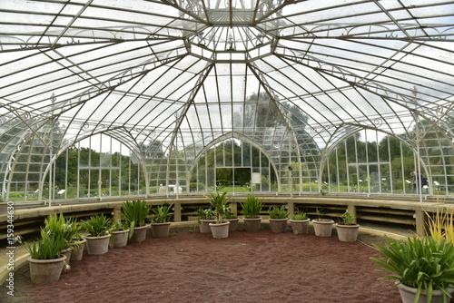 Intérieur de la Serre Balat construite en 1854 au Jardin Botanique ...