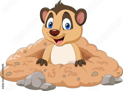 Cartoon meerkat in a hole Tapéta, Fotótapéta