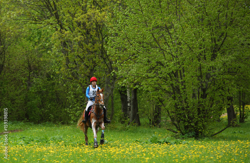 Horse and rider ride cross country