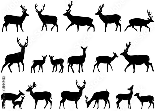 Photographie Collection of silhouettes of wild animals - the deer family