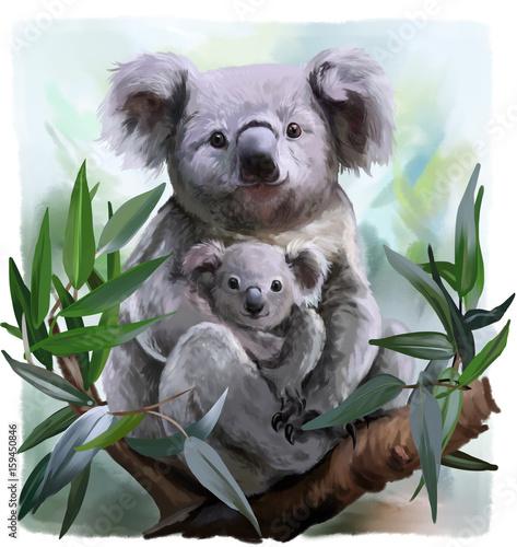 Naklejki koala  koala-and-her-baby-watercolor-painting